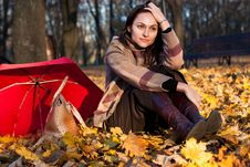 Beautiful Young Woman Sitting In Autumn Leaves Stock Image