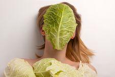 Free Cabbage Stock Image - 16767271