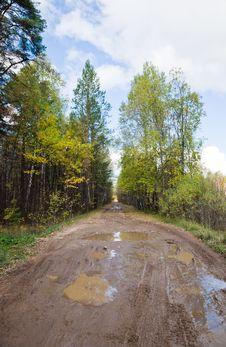 Free Muddy Rural Road Stock Images - 16769064