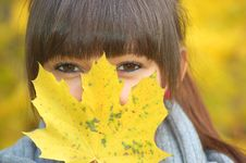 Free Autumn Portrait Stock Photography - 16769542