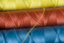 Free Sewing Thread Royalty Free Stock Photography - 16769637