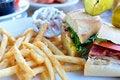 Free Club Sandwich Royalty Free Stock Photo - 16771895