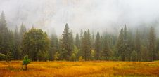 Free Yosemite Valley Scene Stock Images - 16772714
