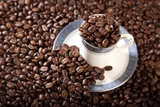 Free Cup And Saucer Full Of Roasted Coffee Beans Stock Images - 16775674