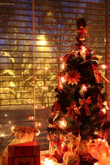 Free Christmas Tree By The Window Royalty Free Stock Photos - 16778498