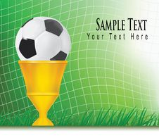 Free Football Background With Champion Cup. Royalty Free Stock Images - 16779379