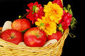 Free Autumn Basket With Apples And Flowers Stock Photo - 16783120