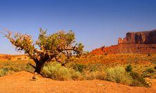 Free Desert Landscape Stock Images - 16780034