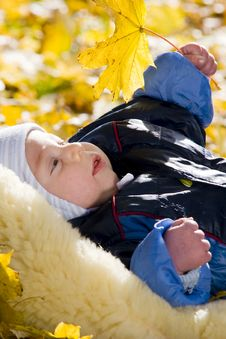 Baby Boy With Autumn Leave Royalty Free Stock Photos