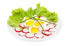 Free Salad Of Radish And Eggs Stock Images - 16782814