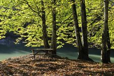 Free Beautiful Autumnal Lake Royalty Free Stock Photo - 16784925