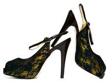 Free Womanish Shoes Isolated Royalty Free Stock Image - 16785296