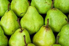 Free Green Pear Background Royalty Free Stock Images - 16785339
