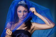 Free Girl With Diamond Crown And Veil Royalty Free Stock Photo - 16785665