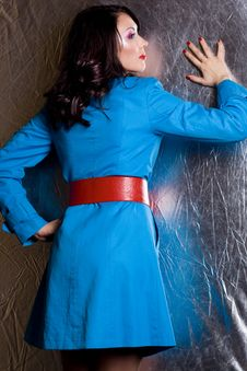 Free Elegant Fashionable Woman Stock Photo - 16785860
