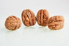 Free Walnuts Stock Images - 16786074