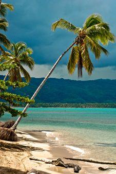 Free Caribbean Beach Stock Photography - 16787632