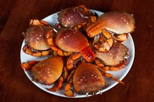 Free Pile Of Crabs Royalty Free Stock Images - 16788759