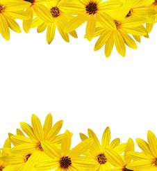Yellow Sunflower Made Frame Royalty Free Stock Photo