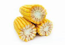 Free Maize On White Background Stock Photos - 16789063