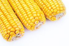 Free Maize On White Background Royalty Free Stock Photography - 16789067