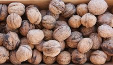 Free Macro View Of Walnut Stock Images - 16789774
