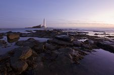 St Mary S Lighthouse At Sunrise In Purple Royalty Free Stock Images