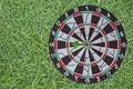 Free Dart Board On Green Grass Stock Photography - 16794312