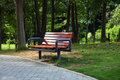 Free Bench In Park Stock Photo - 16794850