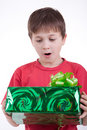 Free The Boy Has Received A Gift Royalty Free Stock Photo - 16795025