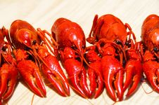 Three Crayfishes Stock Photos