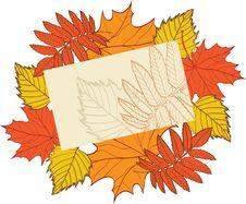 Free Autumn Background Stock Image - 16794231