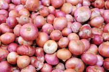 Free Red Onions Stock Photo - 16794450