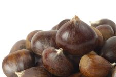 Free Some Chestnuts Stock Photo - 16795390