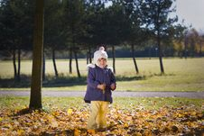 Free In The Autumn Park Royalty Free Stock Images - 16796289