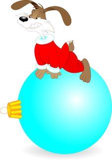 Free Rabbit Stock Images - 16796754