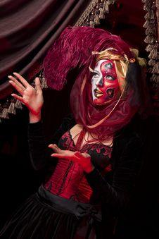 Venetian Mask Stock Images