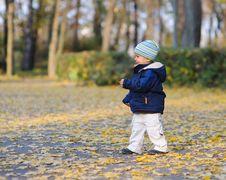 Little Cute Boy Walks Stock Photo