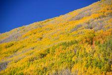 Free Fall Mountain Side Stock Image - 16799291