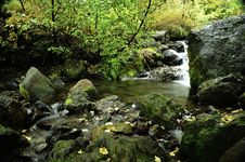 Free Slow Moving Creek Stock Photo - 16799770