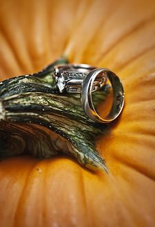 Free Wedding Rings On Pumpkin Royalty Free Stock Photo - 16799875