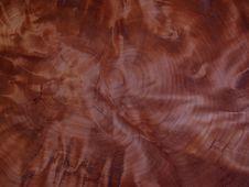 Free Tree Ring Pattern Stock Photo - 1680320