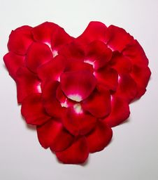 Heart Of Rose Petals Royalty Free Stock Images