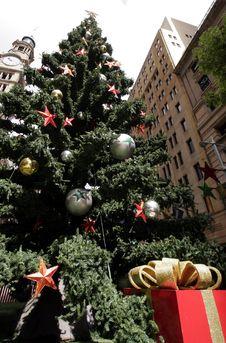 Free Christmas Tree Stock Photography - 1680682