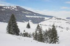 Winter In Carpathian Mountains Stock Images
