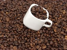 Free Coffe Royalty Free Stock Image - 1681466