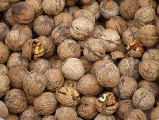 Walnuts With Shells Royalty Free Stock Photo