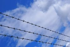 Free Long Barbed Wire Stock Photos - 1685103