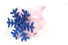 Free Pink Piggy Bank With Snowflake Stock Photo - 1685460