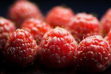 Free Raspberries Stock Image - 1688921